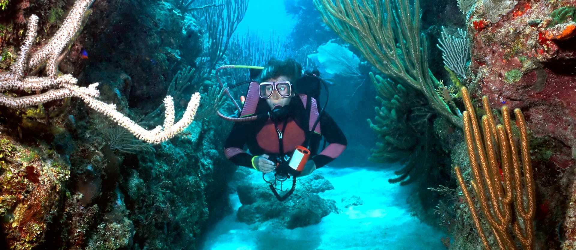 lr-dive-slider32
